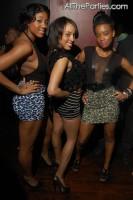 panel-trio-skirts